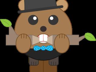 Banking Beaver Microsite